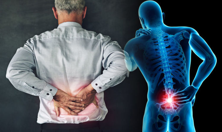 Royal Palm Chiropractic Treats Lower and Mid Back Pain